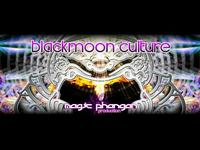 blackmoon culture, party, phangan, trance, psychedelic, news